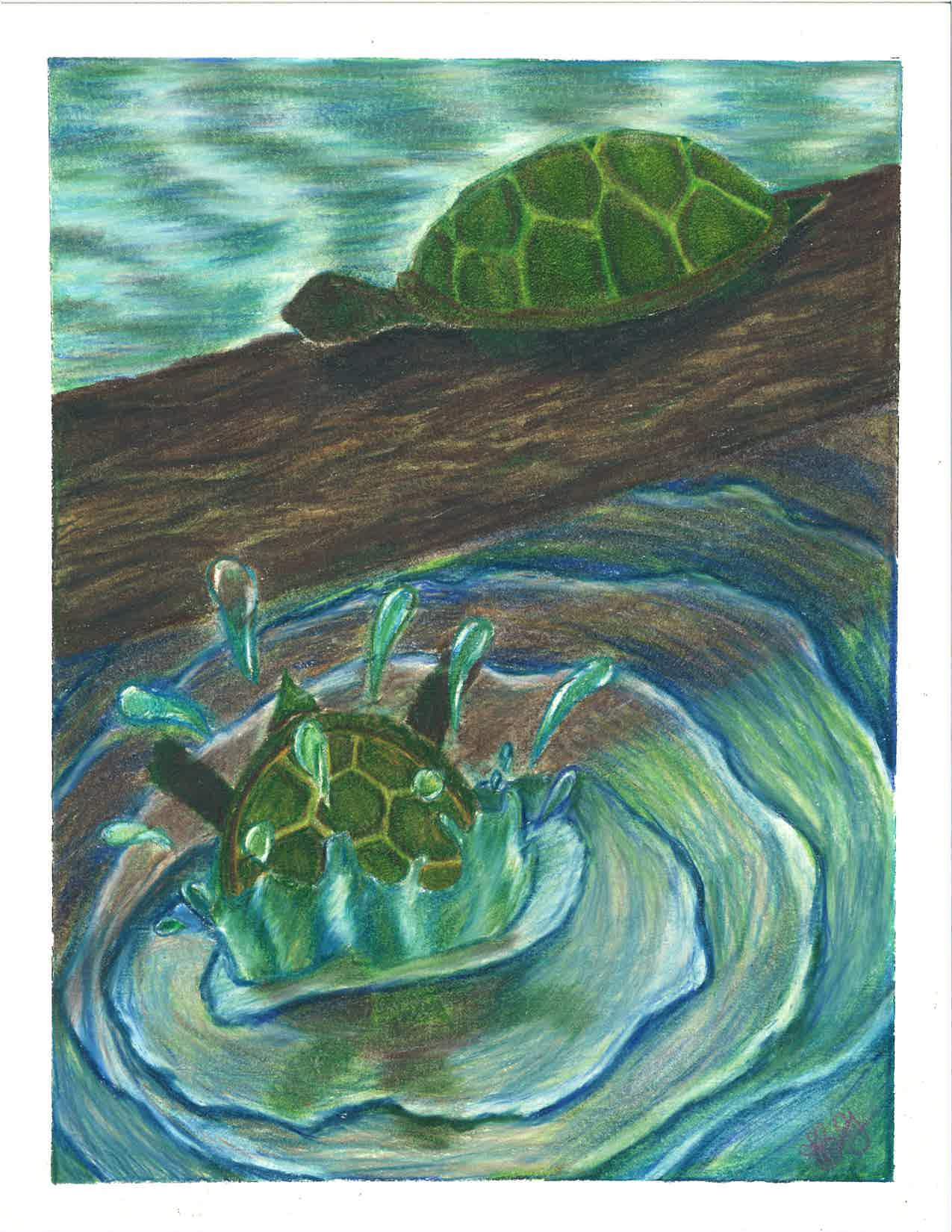 one turtle splashes into the water as a second turtle remains on a log
